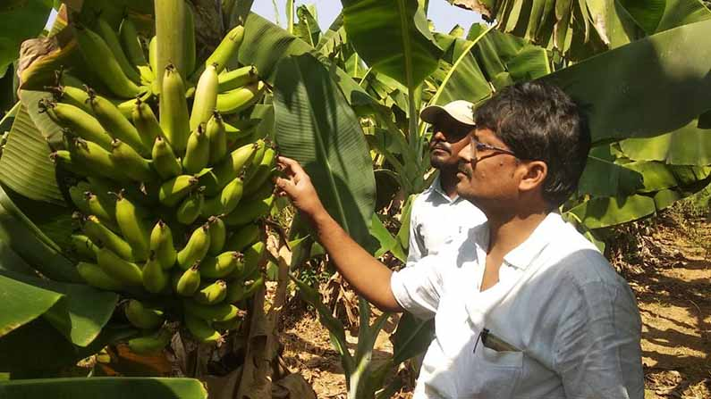 farmer yadagiri