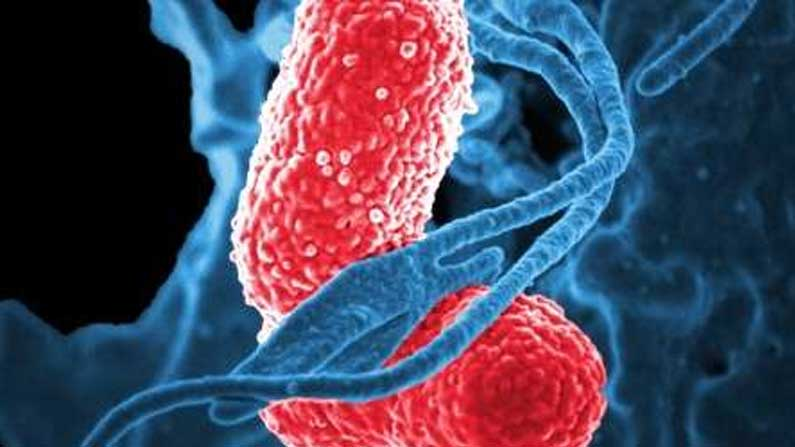 Over use of Sanitizer may lead to the creation of super bacterias